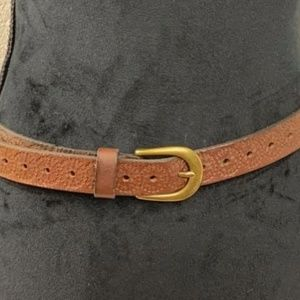 Brown Fossil Belt - New